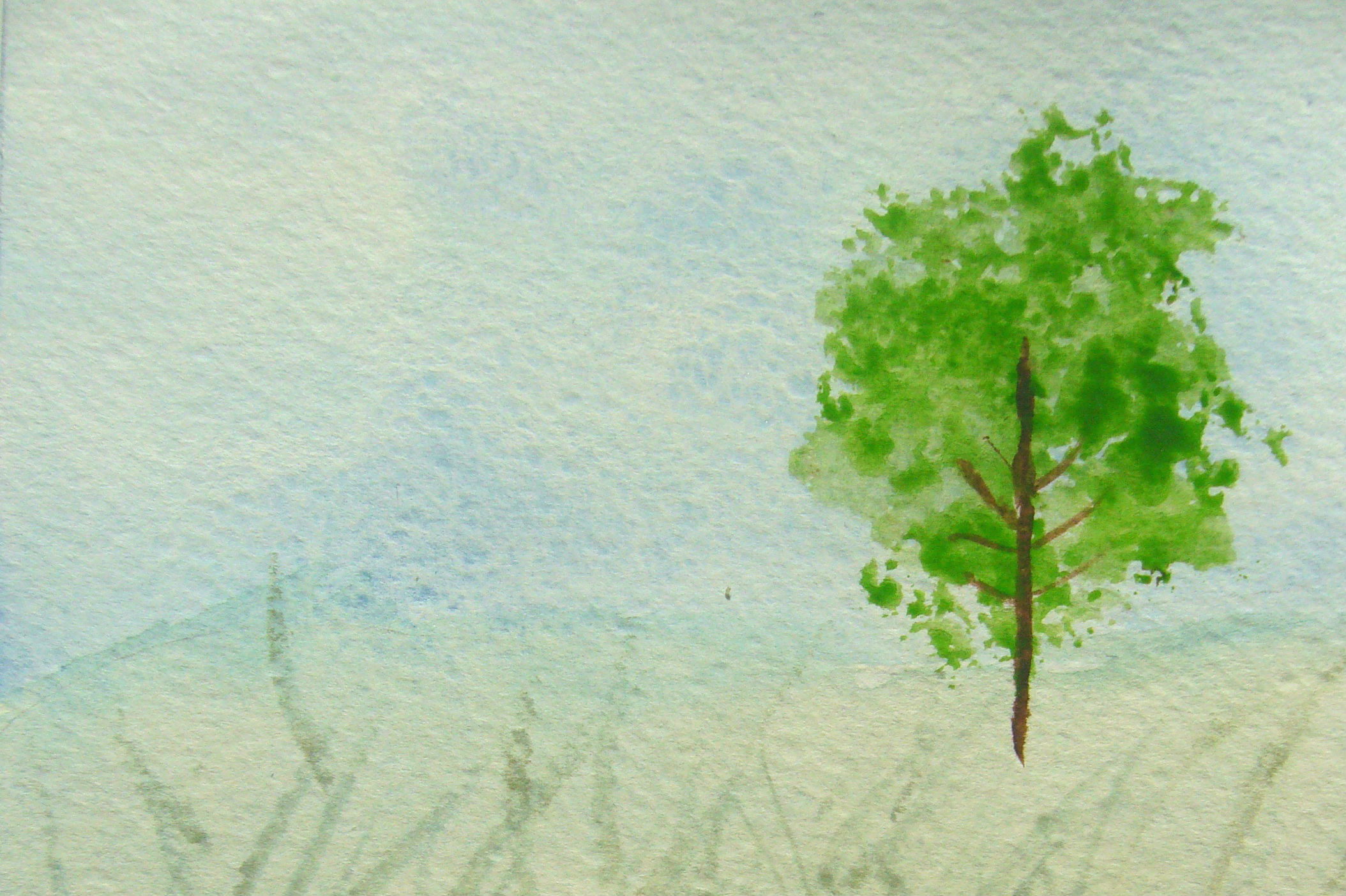 Watercolour Step-by-Step: Beginners